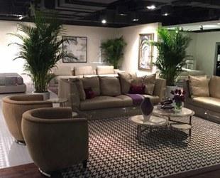 上海植物租赁公司常见的